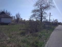 Sell a house with a plot of 40 acres in Berezan St. Medicina 64